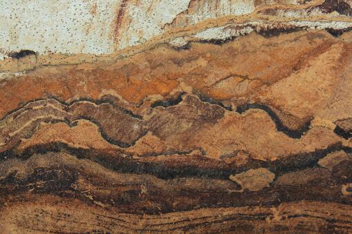 化石——摄图