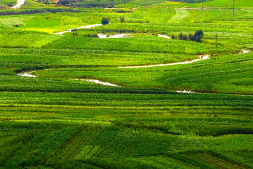 農村耕地-攝圖網
