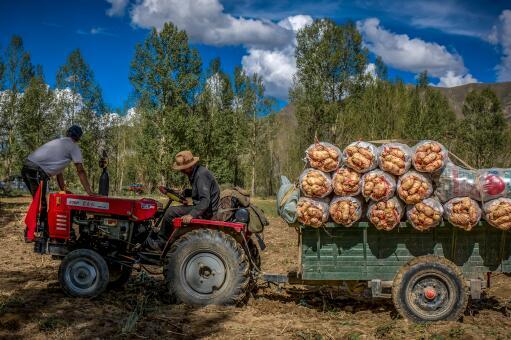 买一台农用拖拉机要多少钱-摄图网