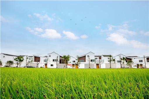 农村宅基地不能继承的情况有哪些-摄图网