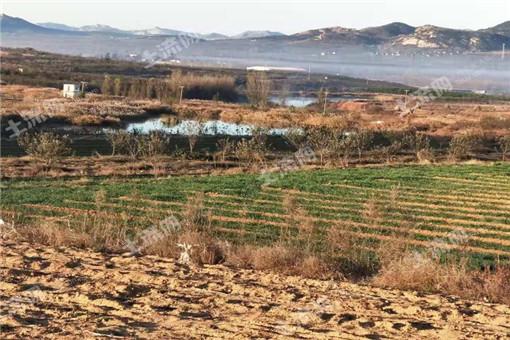 納雍縣土地流轉政策