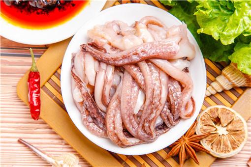 魷魚的營養價值和功效-攝圖網