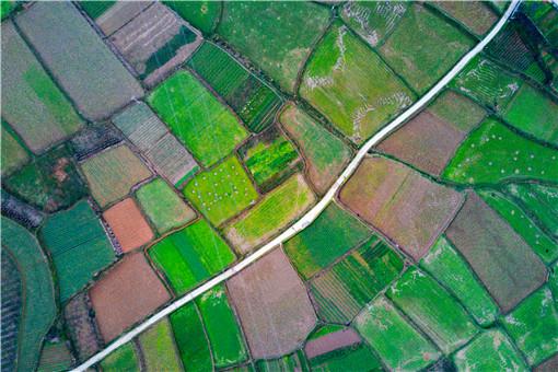 土地-摄图网