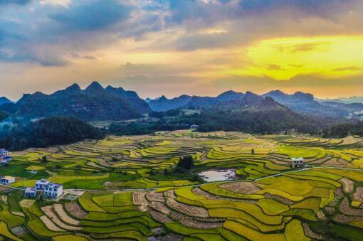 鄉村振興——攝圖