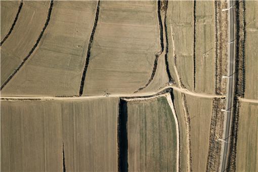農村有潛力種植項目-攝圖網