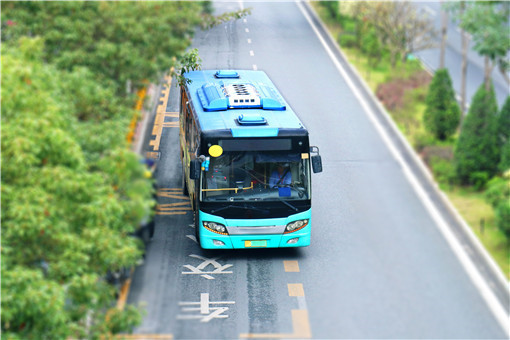 上海熊貓公交車上路-攝圖網