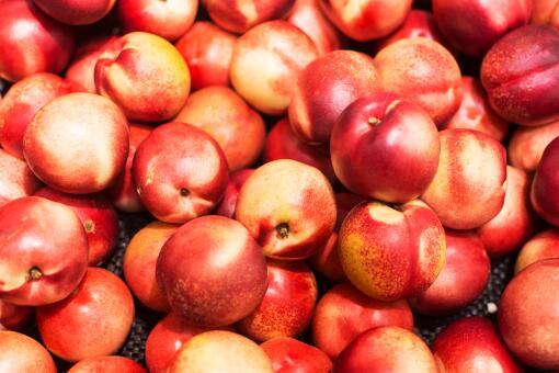 油桃幾月份成熟-攝圖網