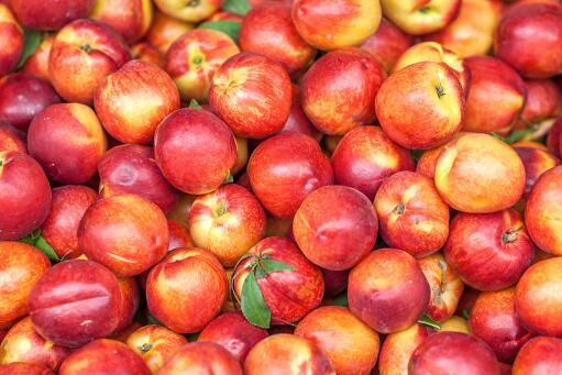 油桃-攝圖網