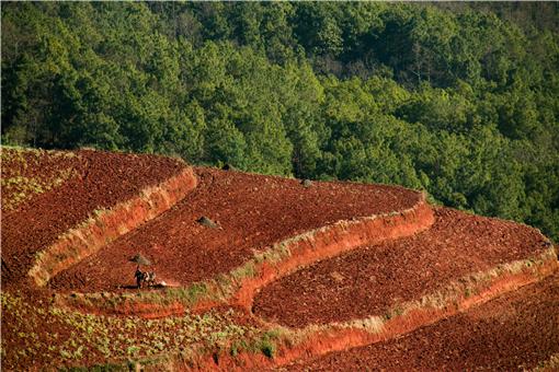 云南省耕地多少錢一畝-攝圖網