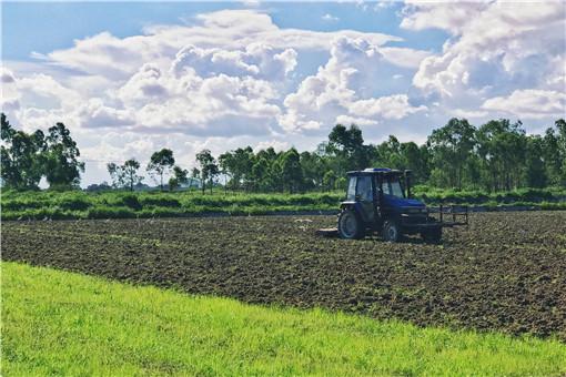 改變用途的耕地不再給予耕地地力補貼-攝圖網