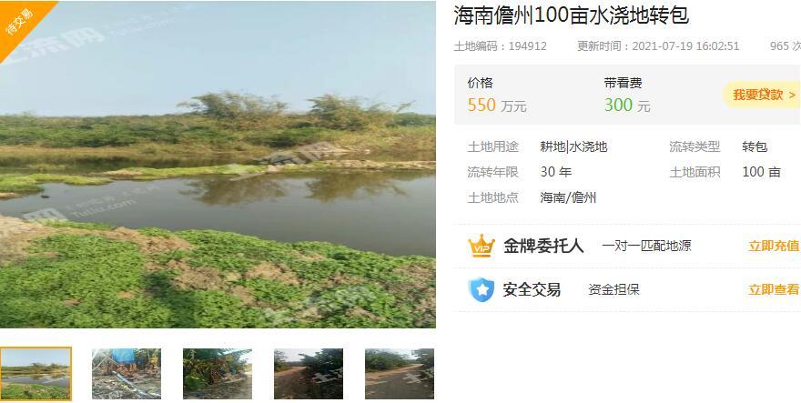 海南儋州水澆地