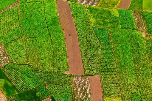 河北耕地多少錢一畝-攝圖網