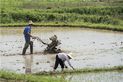 耕地地力保護補貼標準-攝圖網