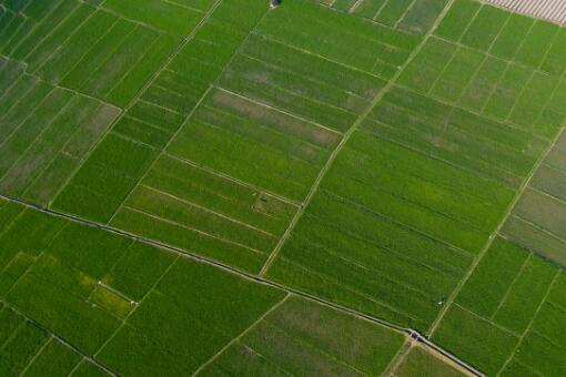 永久基本農田-攝圖網