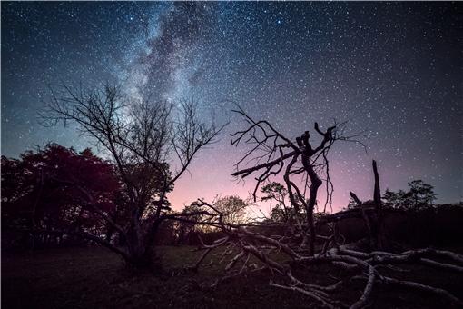 2021英仙座流星雨直播-攝圖網