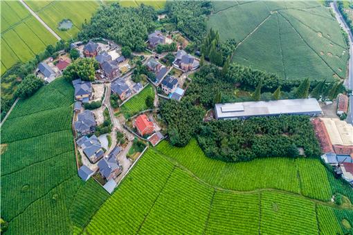 2021年9月1號以后農村宅基地有什么新政策-攝圖網