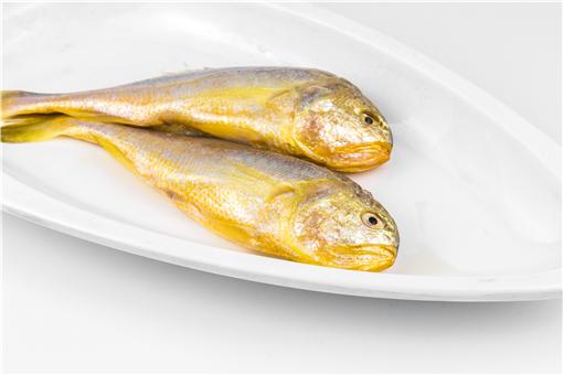 黃花魚多少錢一斤-攝圖網