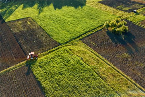 2021年小麦种植的最佳时间-摄图网