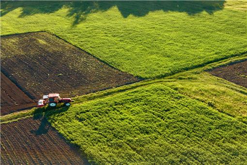 小麦最晚什么时候播种-摄图网