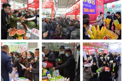 哈尔滨种业博览会