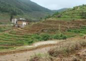 浙江省關于三農問題的政策解讀