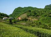 湖北省關于三農問題的政策解讀