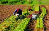 西寧市關于三農問題的政策解讀