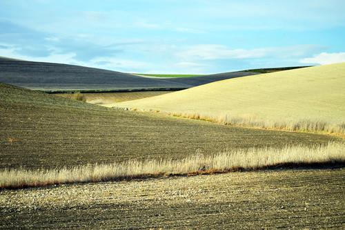 土地确权三农问题