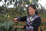 農村婦女成為種植土專家 她的致富秘訣在哪里?