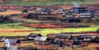 """農村城鎮化就是""""合村并鎮""""嗎?"""