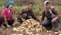 2018年济南被征地农民养老保障对象范围以及补缴标准?
