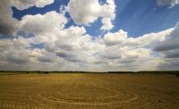 第二轮土地承包时间是多长?农村土地二轮承包的效力是怎样的?