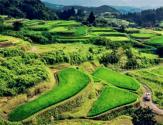 农村土地最新价格!最高可以达20万元一亩
