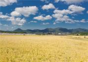"""廣西荔浦:發展""""旅游+工業+農業""""模式,旅游扶貧幫助農戶改善生活"""