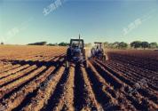 石家莊:進行農村品牌建設與互聯網架構,發展現代農業促進鄉村振興