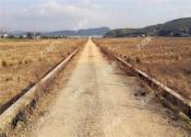 土地确权农民不签字还有效吗?不签字后果会怎么样?