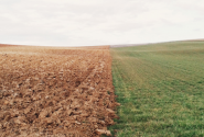 """34亩多余土地开荒地找到了""""主人""""!"""