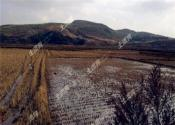农村土地确权之后,土地到底属于谁?
