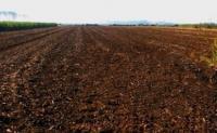 農村土地承包合同哪些情況是無效的?