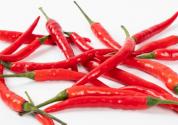 2019年種植辣椒賺錢嗎?