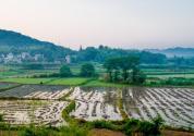 堅決制止變動改變承包期、隨意流轉外出打工者土地等違背農村土地承包法的行為