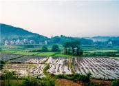 2019农村土地承包法修改了哪些内容?