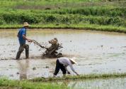农村土地承包补贴多少钱一亩?2019年土地承包新政策规定详解