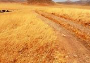 国家质量兴农战略规划(2018—2022年)解读