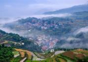 湖南省出臺鄉村人才振興行動計劃,這類人最高可補助100萬元!
