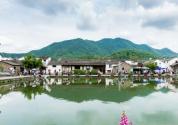 """2019年湖南省委一号文件:""""三农""""领域还有哪些硬任务?"""