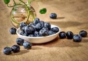 哪个品种的蓝莓最甜?价格是多少钱一斤?