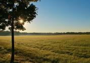 一公顷等于多少亩地?