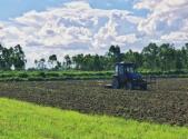 耕地土地使用權證更換相關內容有哪些?