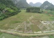 劃撥土地使用權管理暫行辦法